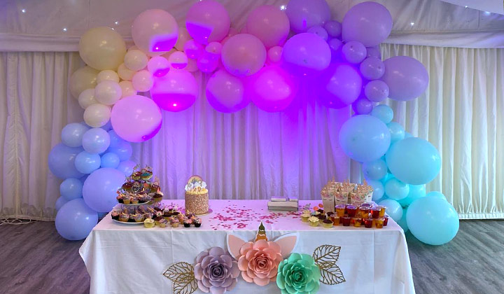 Birthday Party Venue - Essex - London - Chigwell Marquees